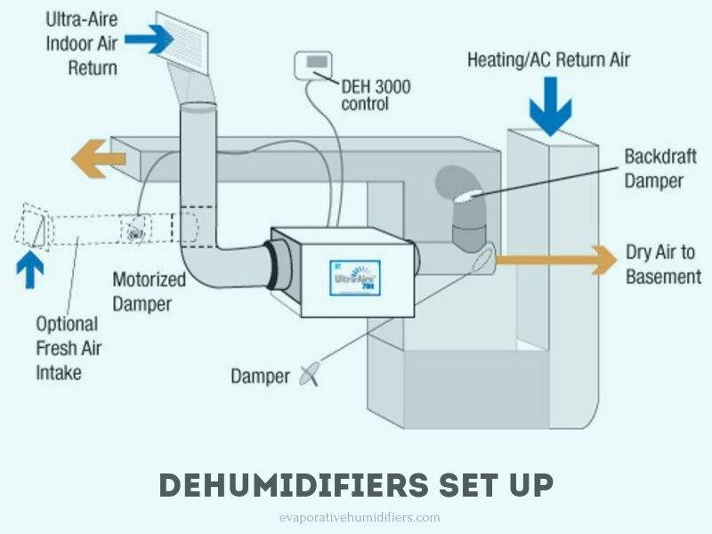 How To Set Up A Dehumidifier